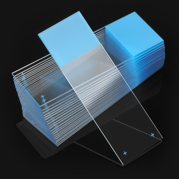 Positive Charged Microscope Slides