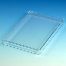 Lid, for Microtitration Plates, PS
